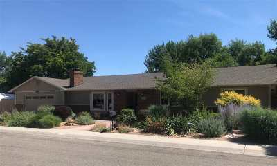 Single Family Home For Sale: 358 Pikes Peak Drive