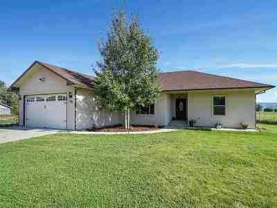 Fruita Single Family Home For Sale: 1815 N 1/2 Road