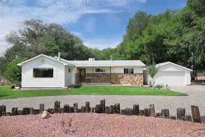 Grand Junction Single Family Home For Sale: 827 26 Road