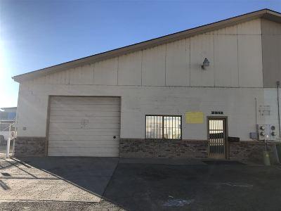 Grand Junction Commercial For Sale: 2513 Weslo Avenue