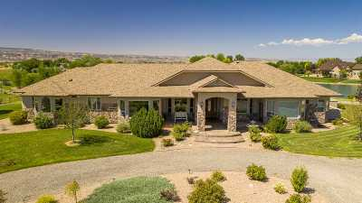 Fruita CO Single Family Home For Sale: $769,500