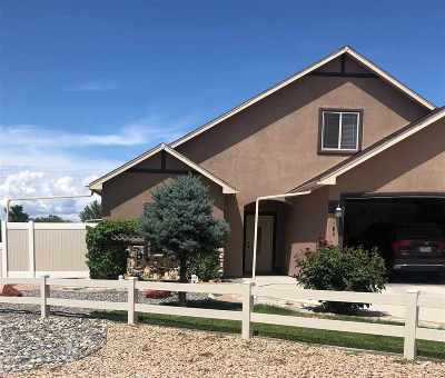 Grand Junction CO Single Family Home For Sale: $399,000