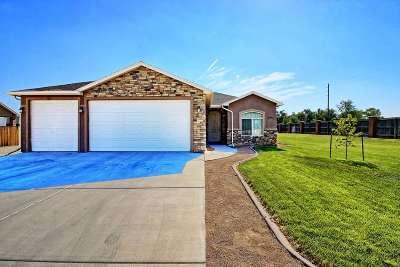 Fruita Single Family Home For Sale: 402 Brandon Drive