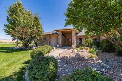 Grand Junction Single Family Home For Sale: 946 25 5/8 Road