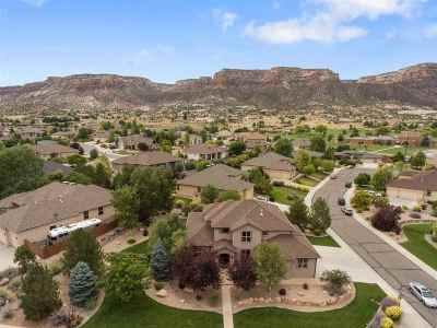 Single Family Home For Sale: 2211 Desert Varnish Court