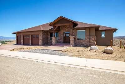Grand Junction Single Family Home For Sale: 180 Gunnison Ridge Court