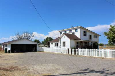 Fruita Single Family Home For Sale: 1195 19 Road