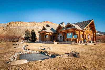 Palisade CO Single Family Home For Sale: $1,990,000