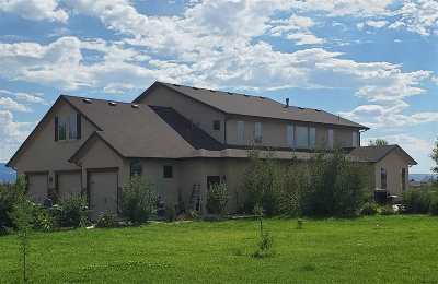 Mesa County Single Family Home For Sale: 1605 17 Road