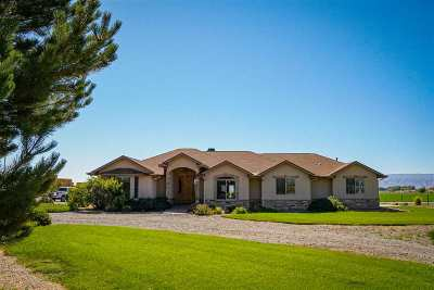 Loma CO Single Family Home For Sale: $1,849,999