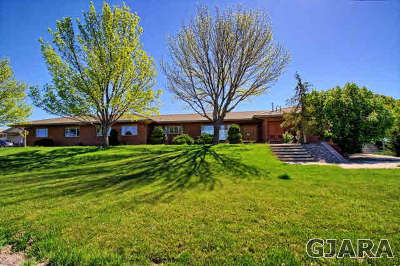 Grand Junction CO Single Family Home For Sale: $1,900,000