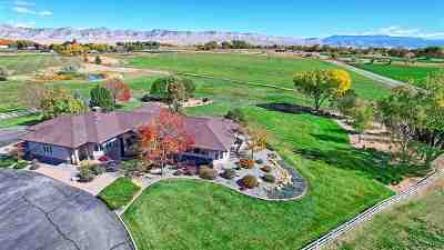 Grand Junction CO Single Family Home For Sale: $1,395,000