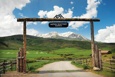 Basalt Residential Lots & Land For Sale: Tbd W Sopris Creek Road