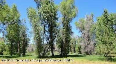 Carbondale Residential Lots & Land For Sale: 003 St. Finnbar