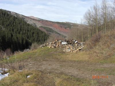 Aspen, Snowmass Single Family Home For Sale: 2655 Midnight Mine Road