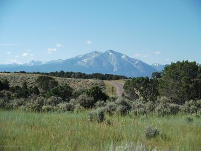 Glenwood Springs Residential Lots & Land For Sale: 0038 Aster Drive