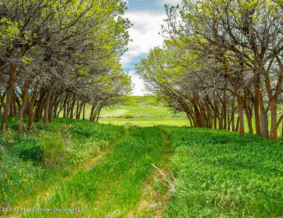 Carbondale Residential Lots & Land For Sale: Tbd Garfield County 100 Road