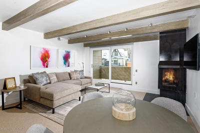 Aspen Condo/Townhouse For Sale: 1007 E Hyman Avenue #8