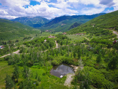 Snowmass Single Family Home For Sale: 594/605 Shield O Road