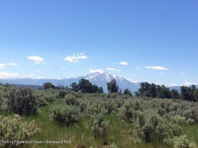 Glenwood Springs Residential Lots & Land For Sale: 1675 Elk Springs Drive