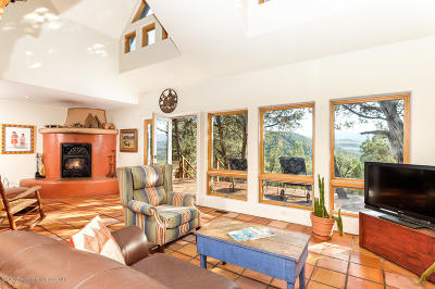 Carbondale Single Family Home For Sale: 0155 Maroon Mesa Road