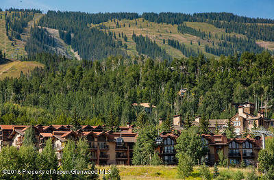 Snowmass Condo/Townhouse For Sale: 400 Wood Road #2112