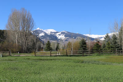 Snowmass Residential Lots & Land For Sale: 380 Little Elk Creek Avenue