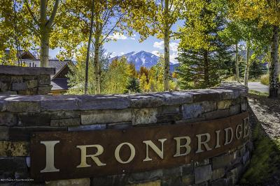 Glenwood Springs Residential Lots & Land For Sale: 206 River Vista