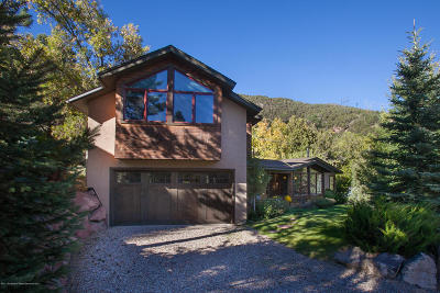 Basalt Single Family Home For Sale: 650 E Sopris Drive