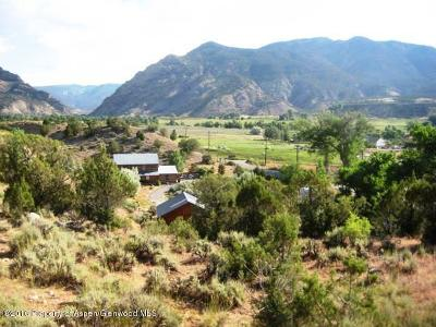 Rifle Single Family Home For Sale: 1829 State Hwy 325