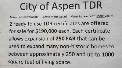 Aspen Residential Lots & Land For Sale: 1004 E Cooper