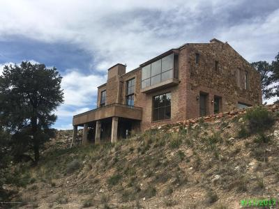 Glenwood Springs Single Family Home For Sale: 1108 County Road 110