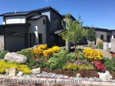 Carbondale Single Family Home For Sale: 21 St Finnbar Farm