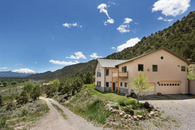 Glenwood Springs Single Family Home For Sale: 1853 County Road 109