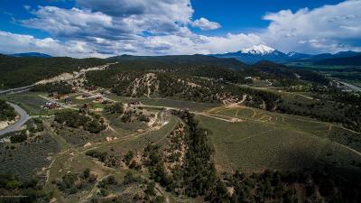 Glenwood Springs Residential Lots & Land For Sale: 116 Paintbrush Way