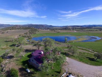 Silt Farm & Ranch For Sale: 2094/1417 County Road 326