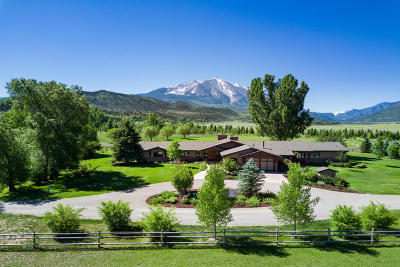 Carbondale Single Family Home For Sale: 1567 Prince Creek Road