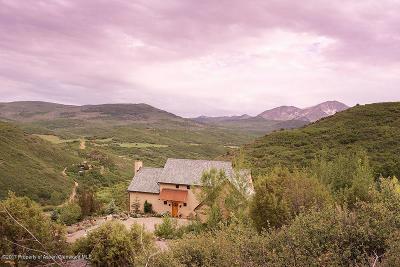 Basalt Single Family Home For Sale: 301 Stone Road