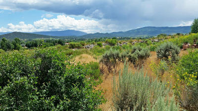 Carbondale Residential Lots & Land For Sale: 4066 Crystal Bridge Drive