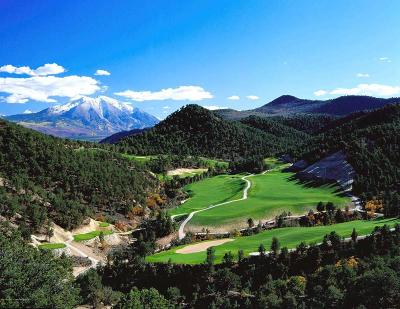 Glenwood Springs Residential Lots & Land For Sale: 241 Silver Mountain Drive