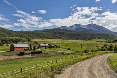 Basalt Single Family Home For Sale: 2240 Old Herron Road