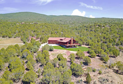 Glenwood Springs Single Family Home For Sale: 2579 County Road 115