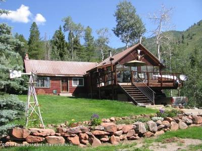 Basalt Single Family Home For Sale: 15405 Frying Pan Road