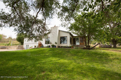 Rifle Single Family Home For Sale: 347 Wittwer Lane