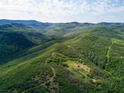 New Castle Farm & Ranch For Sale: Tbd County Road 312