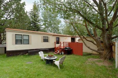 Aspen Single Family Home For Sale: 97 Aspen Village Road
