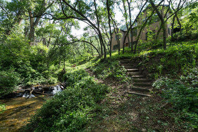 Glenwood Springs Single Family Home For Sale: 956 Mitchell Creek Road