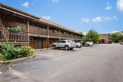 Basalt Condo/Townhouse For Sale: 23284 Two Rivers Road #15
