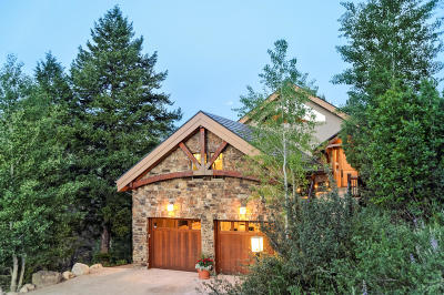 Aspen Single Family Home For Sale: 201 Pitkin Iron Road