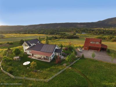 Basalt Single Family Home For Sale: 1126 Hooks Spur Road